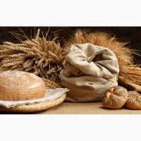 Куплю пшеницю з повишеною смітною не класну з різними захворюваннями
