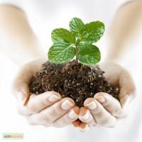 Продам средства защиты растений