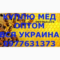 Куплю мёд по Новомосковском Районе