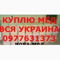КУПЛЮ МЁД. Забираем своим транспортом по Днепропетровской и СОСЕДНИХ обл