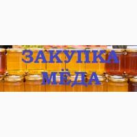 Закупка мёда с РАПСА и с ПОДСОЛНУХА 2020 - 2021 г. Вся Украина