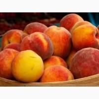 Продам персики