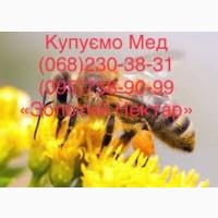 Оптовая закупка мёда урожая 2021 года Николаев и районы