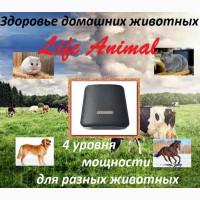 Лечение кошки, собаки, коровы и др. питомцев устройством Life Animal. 4 уровня мощности