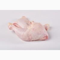 Продаємо четвертину курячу 2 HoReCa. Продаем четверть куриная HoReCa