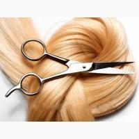 Продати волосся, куплю волосся Львів та Західна Україна