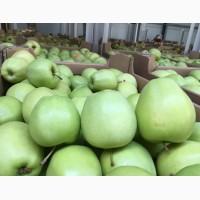 Продам яблоки есть объема