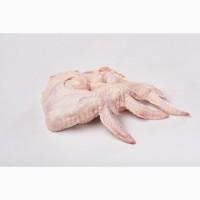 Продаємо курячі крила HoReCa. Продаем куриные крылья HoReCa