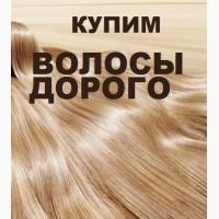 Продать волосы дорого, скупка натуральных волос, неокрашенных