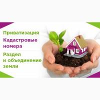 Приватизация земли, землеустройство, кадастровые номера. Проект отвода