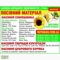 ГРАН» пропонує насіння соняшнику під гранстар Нео