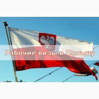 Рабочие визы в Польшу (полугодовое и сезонное на 9 мес)