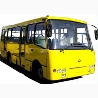 Водители кат д на автобус