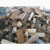 Дрова дубові (рубані та кругляк) продаж Луцький район