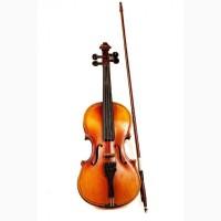 Аренда, прокат скрипки, виолончели, контрабаса в Киеве