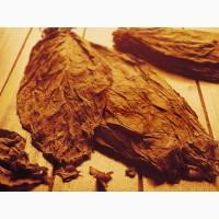 Тютюн сорт Берлі та сорт Вірджінія-естественной ферментации!низька цина