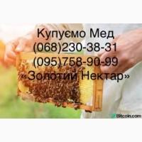 КУПЛЮ МЕД в Желтые Воды (Днепропетровская область)