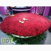 1001 роза с доставкой по Киеву за 2 часа