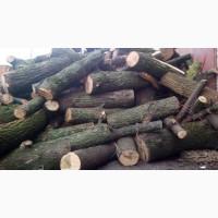 Замовити та купити дрова рубані дрова метровий кругляк Рожище
