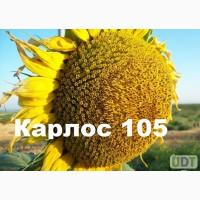 Соняшникове насіння Карлос105 (105дн. вегитації)